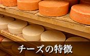 チーズの特徴